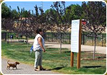 Woman Reading Park Rules Sign