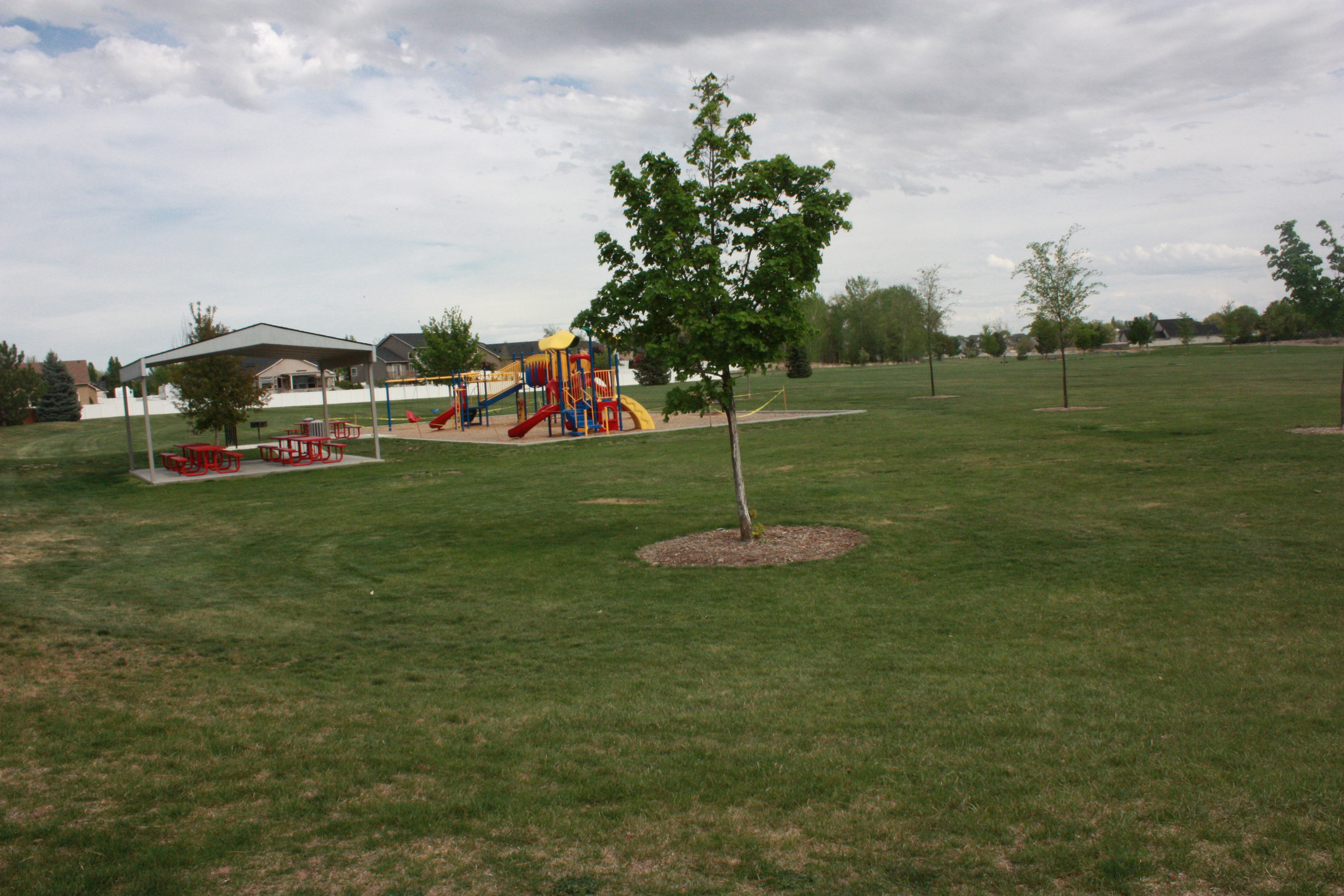 Grassy area with covered structure and blue, red, and yellow play structure