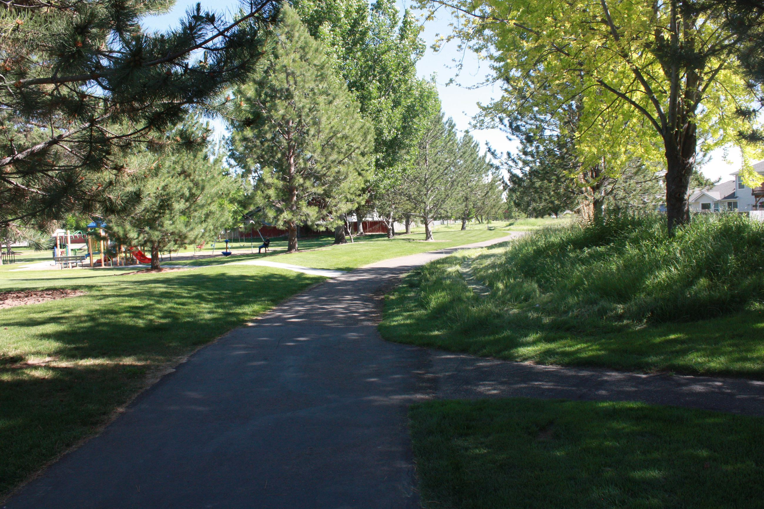 Paved path with grass and large trees on the side