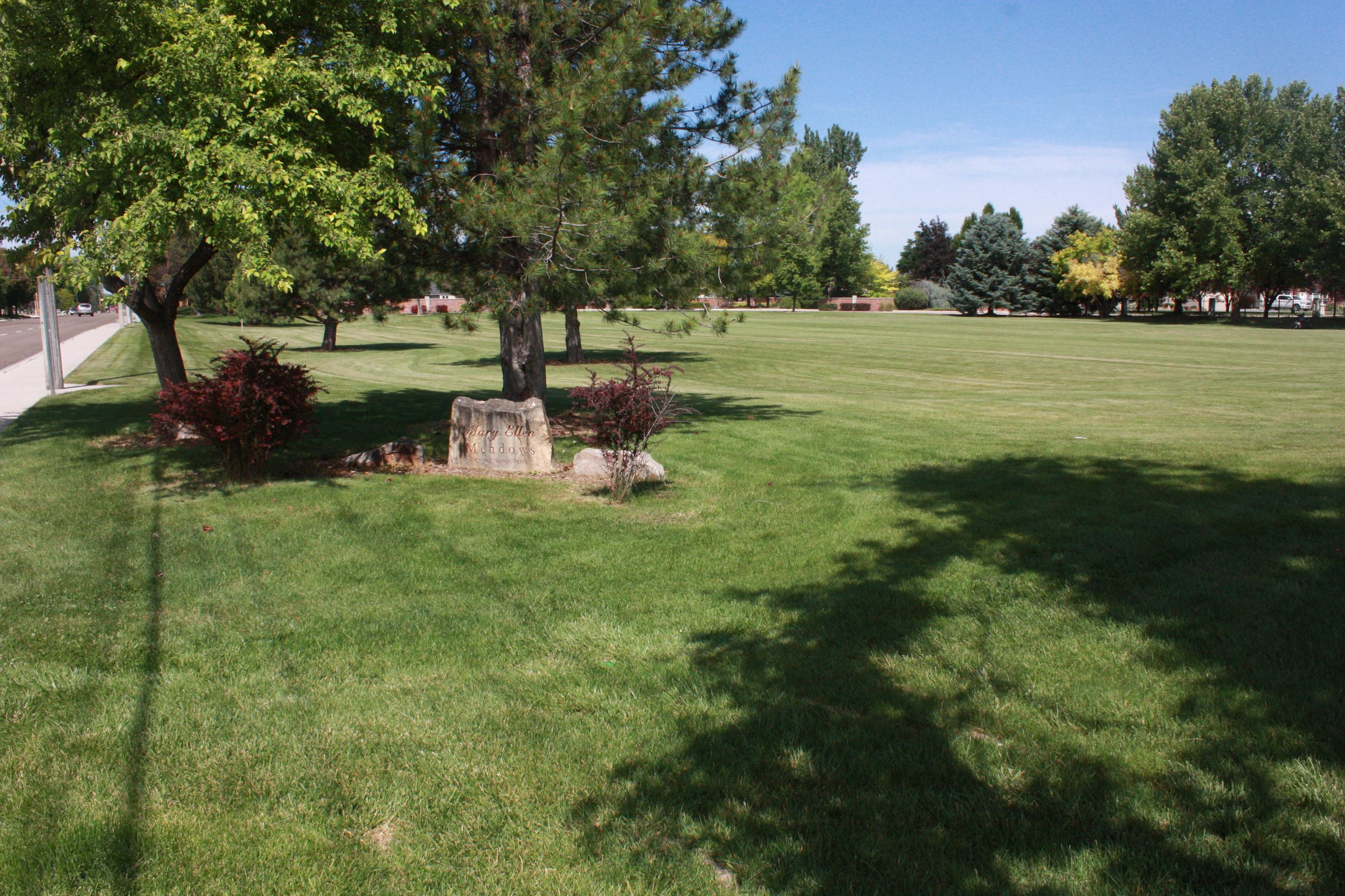 Grassy area with trees and bushes and engraved rock
